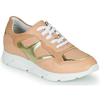 鞋子 女士 球鞋基本款 André HAVILAH 玫瑰色