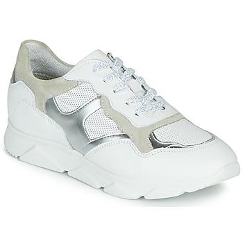 鞋子 女士 球鞋基本款 André HAVILAH 白色