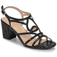 鞋子 女士 凉鞋 André JUDITH 黑色