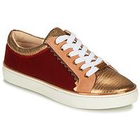 鞋子 女士 球鞋基本款 André LA FUNAMBULE 古銅色
