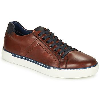 鞋子 男士 球鞋基本款 André SHANN 棕色