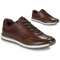 鞋子 男士 跑鞋 André SPORTCHIC 棕色