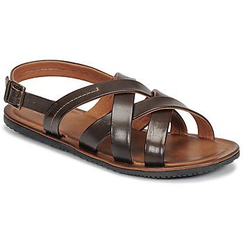 鞋子 男士 凉鞋 André SOLEIL 棕色