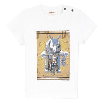 衣服 男孩 短袖体恤 Catimini LARIBI 白色