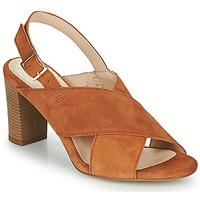 鞋子 女士 凉鞋 Betty London MARIPOL 棕色
