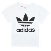 衣服 儿童 短袖体恤 Adidas Originals 阿迪达斯三叶草 TREFOIL TEE 白色