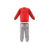 衣服 儿童 女士套装 adidas Performance 阿迪达斯运动训练 MH LOG JOG FL 红色 / 灰色