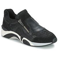 鞋子 女士 球鞋基本款 Ash 艾熙 HOP 黑色