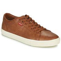鞋子 男士 球鞋基本款 Levi's 李维斯 WOODWARD 棕色