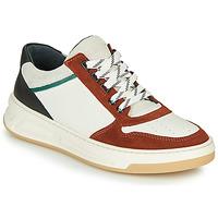 鞋子 女士 球鞋基本款 Bronx OLD COSMO 白色