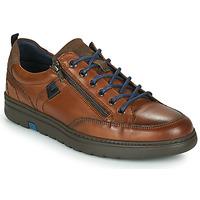 鞋子 男士 球鞋基本款 Fluchos 富乐驰 ATLASS 棕色