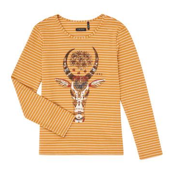 衣服 女孩 长袖T恤 Ikks XR10102 棕色