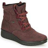 鞋子 女士 短筒靴 Romika CALAIS 08 波爾多紅