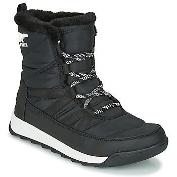 鞋子 女士 短筒靴 Sorel WHITNEY II SHORT LACE 黑色
