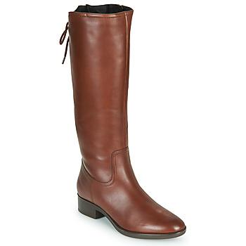 鞋子 女士 都市靴 Geox 健乐士 FELICITY 棕色
