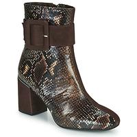 鞋子 女士 短靴 Perlato JAMIROCK 棕色