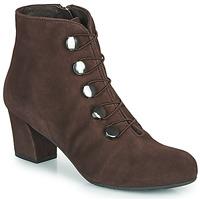 鞋子 女士 短靴 Perlato JAMOVE 棕色