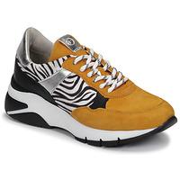 鞋子 女士 球鞋基本款 Tamaris ELLE 芥末黄 / 黑色 / 斑马纹
