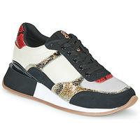鞋子 女士 球鞋基本款 Gioseppo KIROV 黑色 / 白色