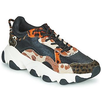 鞋子 女士 球鞋基本款 Gioseppo ALEKSIN 黑色 / 橙色