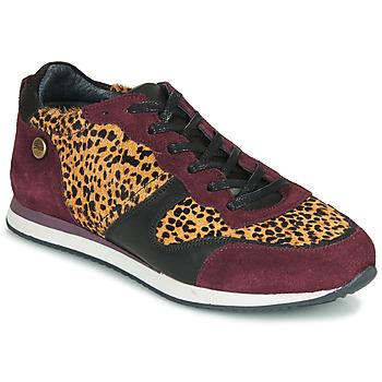 鞋子 女士 球鞋基本款 Pataugas IDOL/I F4E 波尔多红 / Leopard