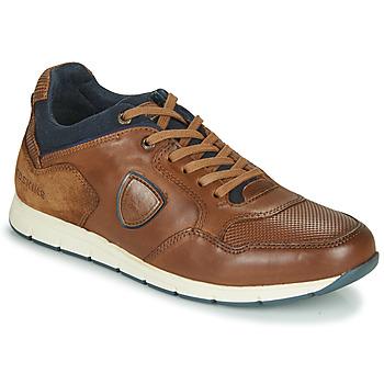 鞋子 男士 球鞋基本款 Redskins SARIETTE 棕色
