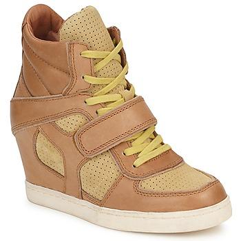 鞋子 女士 高帮鞋 Ash 艾熙 COCA 棕色 / 黄色