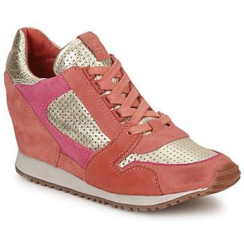 鞋子 女士 球鞋基本款 Ash 艾熙 DEAN BIS 金色 / 珊瑚色 / 玫瑰色