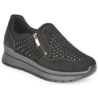 鞋子 女士 球鞋基本款 Primigi (adulte) DONNA ANISIA 黑色