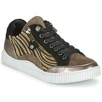 鞋子 女士 球鞋基本款 Regard IDEM V6 CRIS TAUPE 棕色