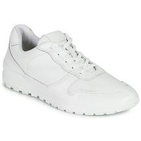鞋子 男士 球鞋基本款 Casual Attitude NOUCHE 白色