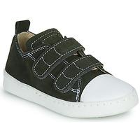 鞋子 男孩 球鞋基本款 Citrouille et Compagnie NADIR 卡其色