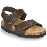 鞋子 男孩 凉鞋 Citrouille et Compagnie BELLI JOE 棕色
