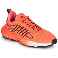 鞋子 女士 球鞋基本款 Adidas Originals 阿迪达斯三叶草 HAIWEE J 橙色 / 黑色