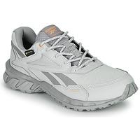 鞋子 球鞋基本款 Reebok Classic RIDGERIDER 5 GTX 灰色