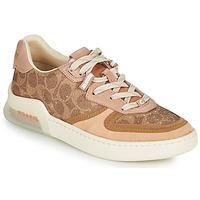 鞋子 女士 球鞋基本款 Coach CITYSOLE 棕色 / 米色 / 裸色