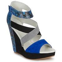 鞋子 女士 凉鞋 Serafini CARRY 黑色 / 蓝色 / 灰色
