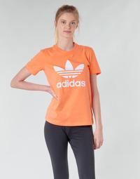 衣服 女士 卫衣 Adidas Originals 阿迪达斯三叶草 TREFOIL TEE 橙色
