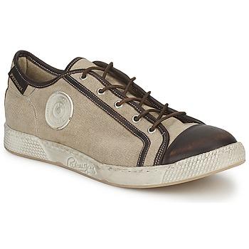 鞋子 男士 球鞋基本款 Pataugas JOKE T 米色