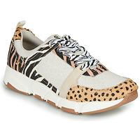 鞋子 女士 球鞋基本款 Gioseppo CREAZZO Leopard