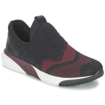 鞋子 女士 球鞋基本款 Ash 艾熙 SODA 波尔多红