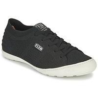 鞋子 女士 球鞋基本款 P-L-D-M by Palladium GLORIEUSE 黑色