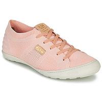 鞋子 女士 球鞋基本款 P-L-D-M by Palladium GLORIEUSE 玫瑰色