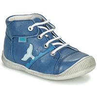 鞋子 男孩 高帮鞋 GBB ABRICO 蓝色