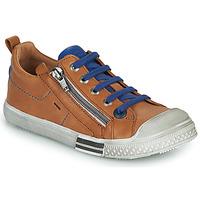 鞋子 男孩 球鞋基本款 GBB STELLIO 棕色