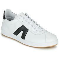 鞋子 男士 球鞋基本款 André MATUS 白色