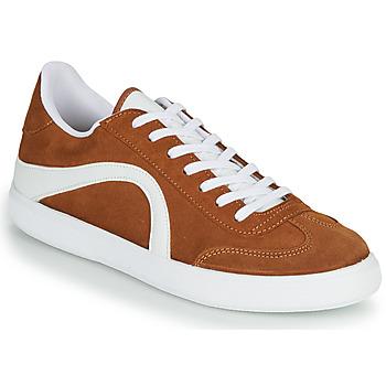 鞋子 男士 球鞋基本款 André POLO 棕色