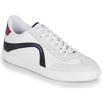 鞋子 男士 球鞋基本款 André POLO 白色