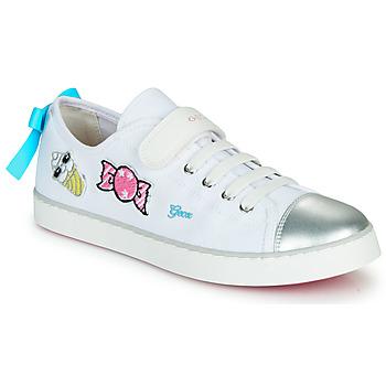 鞋子 球鞋基本款 Geox 健乐士 JR CIAK FILLE 白色 / 银灰色