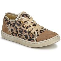 鞋子 女孩 球鞋基本款 Pinocchio 匹诺曹  M. / 棕色